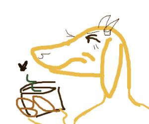 Goat lacks funds