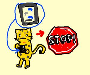 Cheetah has to stop texting
