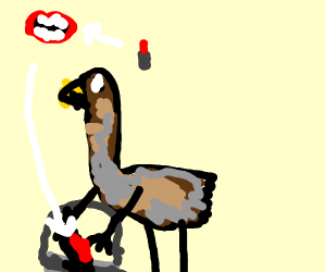 Emu collects lipstick in a bucket
