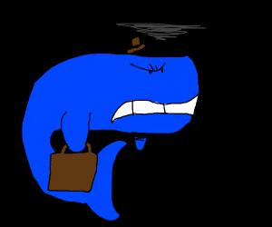 Grumpy whale goes to work