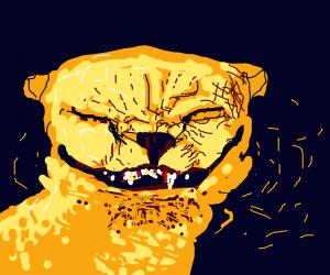 Cheetah Laughing Nefariously