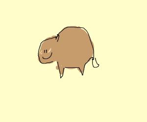 Happy Capybara