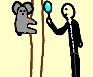Koala Inspector