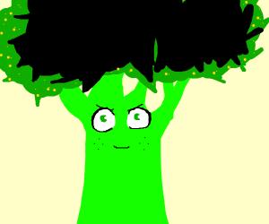Deku the broccoli tree