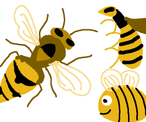 hornet, wasp, and bee hanging out