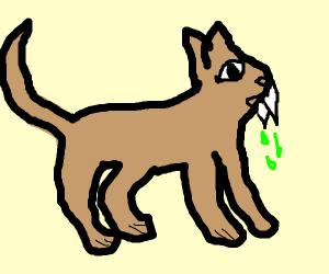 Poison Cougar