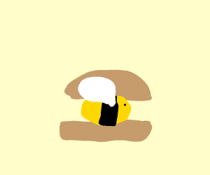 Bumbl-Bee-Burger