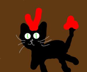 Devil cat!