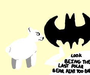 batman relates to polar bear