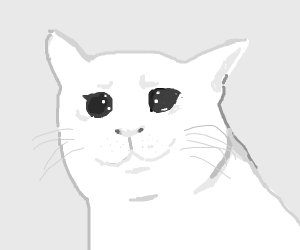 sad heart broken kitten </3