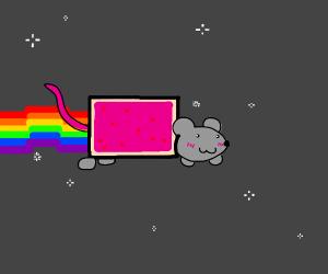 nyan rat