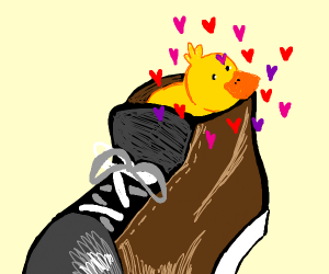 duckling loves a shoe