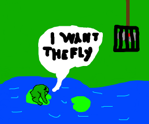 frog wants the fly