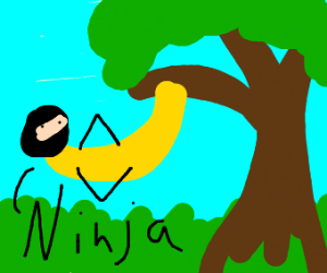 banana ninja hanging from tree