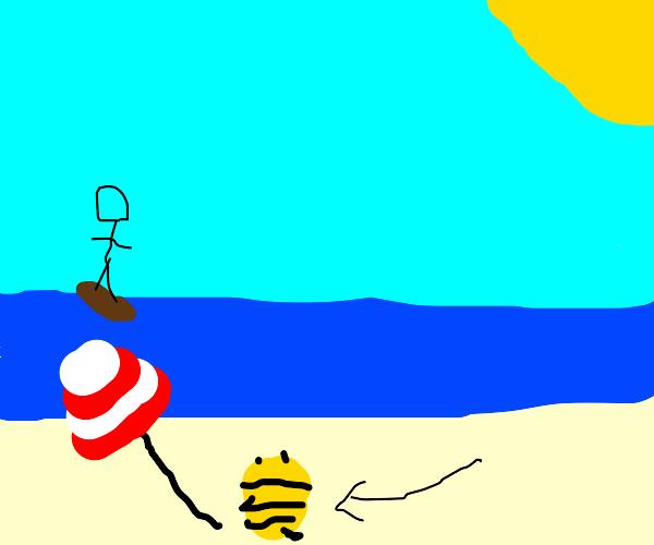 Bee on a Beach
