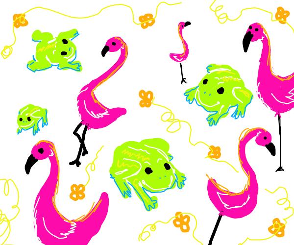 Frogs & flamingos