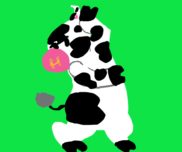Cow doing the flamenco