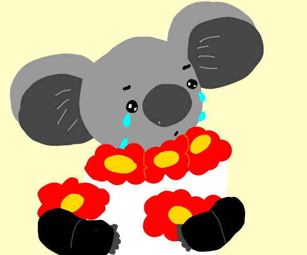 MaleKoala In SuitWithRedBowtie + RedFlowers