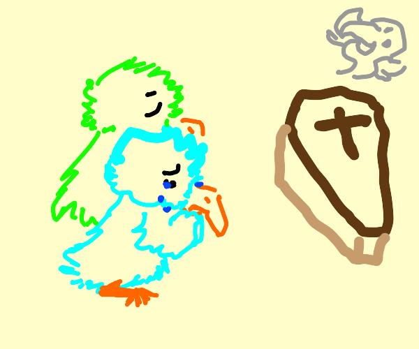 Mourning Bird