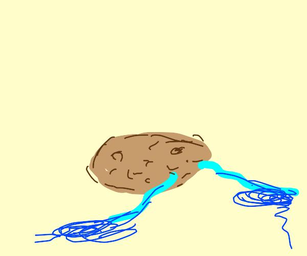 Sad potato UmU