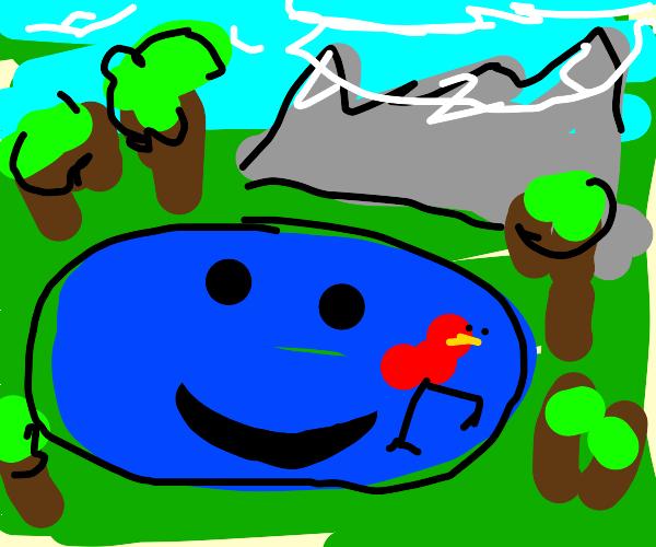 red bird in a smiling lake