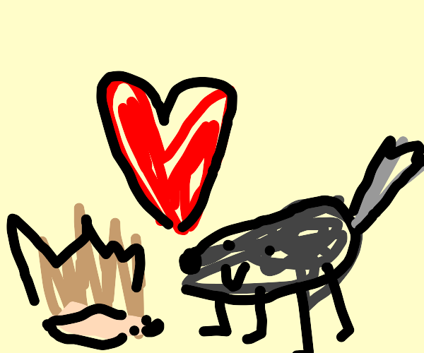 The love between a hedgehog and a wolf