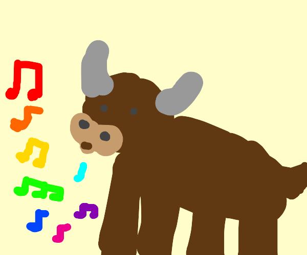Folk musician bull