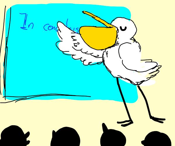 Pelican giving a Presentation