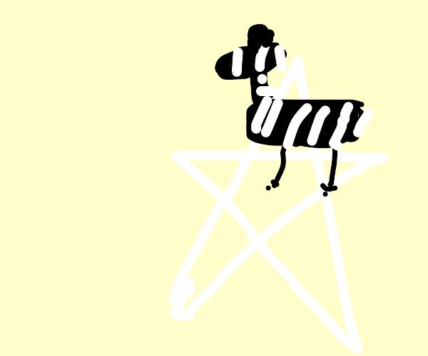 Zebra on a Star