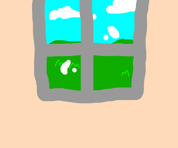window looking out to the grass outside