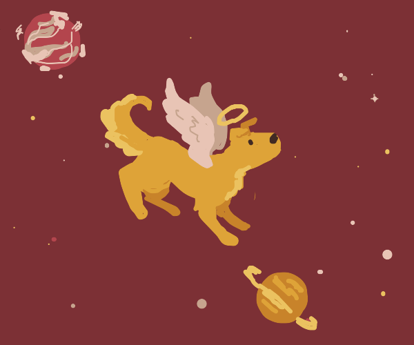 Dog angel in space
