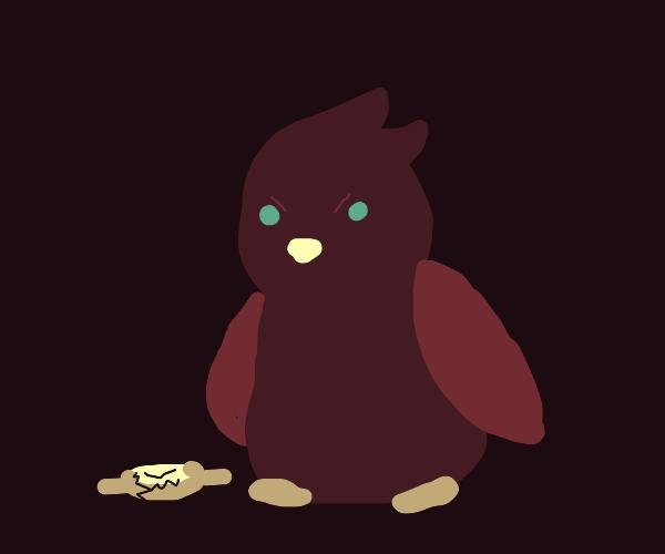 Owl breaking a Watch