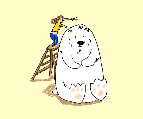 Polar Bear Hairdresser