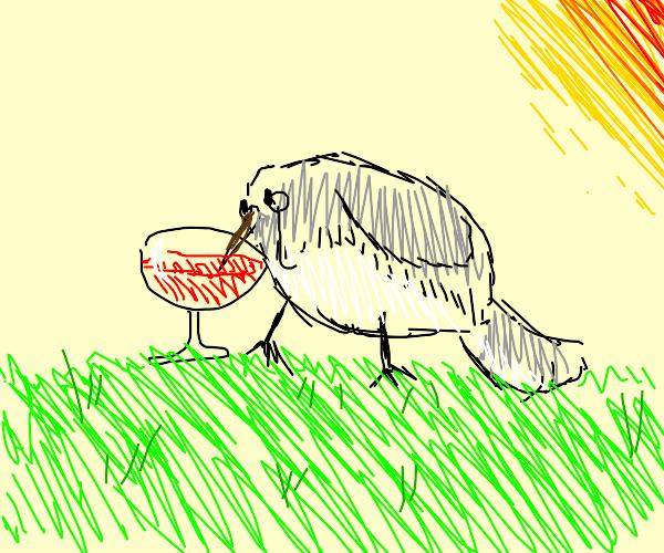 Hummingbird loves Wine