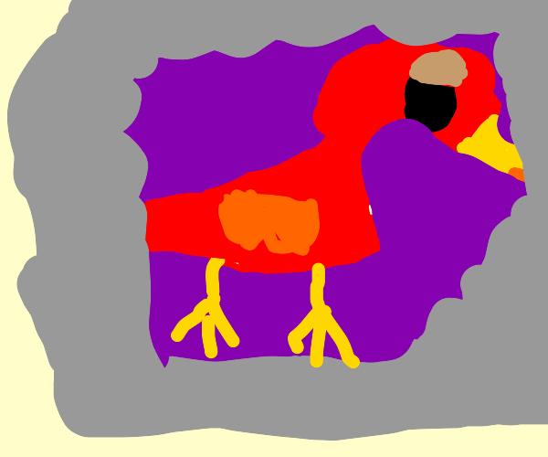 Red bird in a purple lava lamp