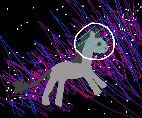 Space Donkey