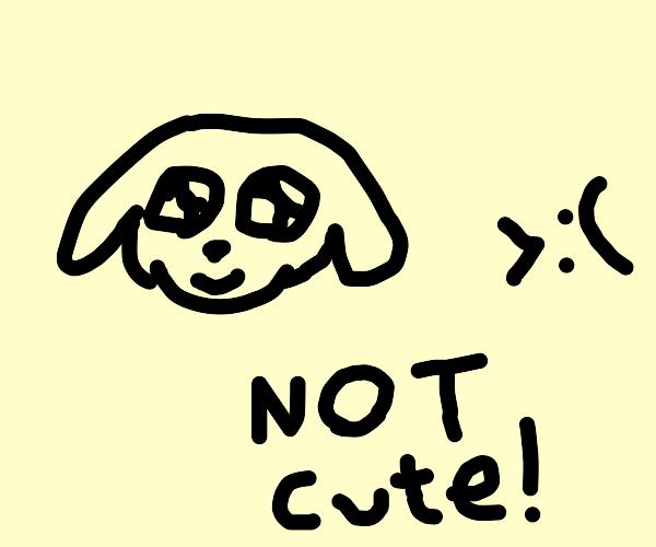 a cute puppy but its not cute