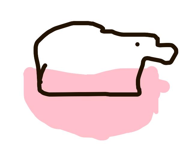 Polar Bear in a Bowl