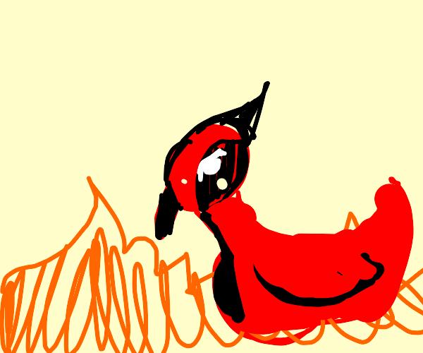 Woodpecker in a Fire
