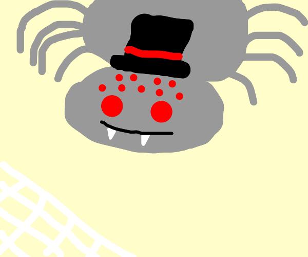 Spider wearing a Hat