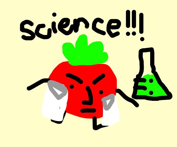 Tomato Engineer