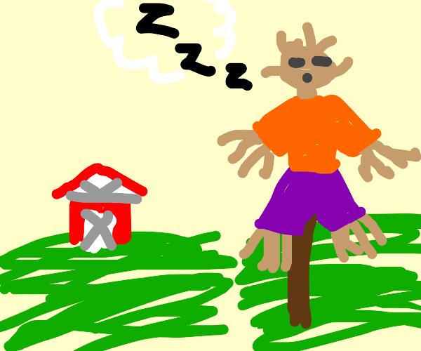 Hombre de paja durmiendo
