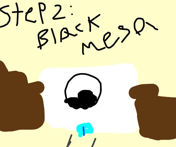 Step 1: New Mexico