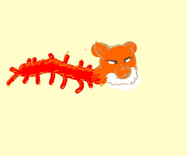 a centipede but its a cat