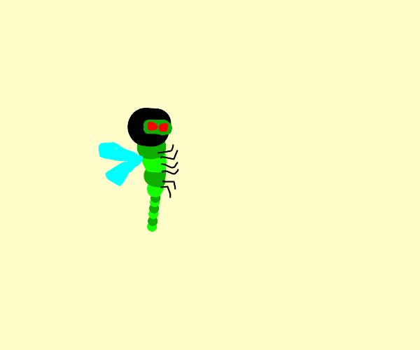 Ninja Dragonfly