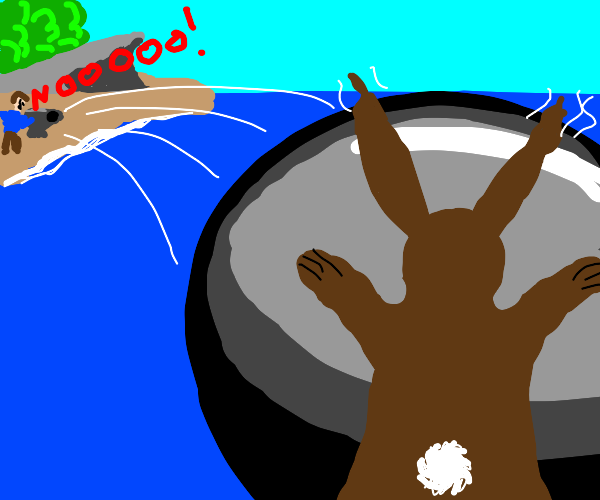 Accidentally shot bunny with cannon into sea