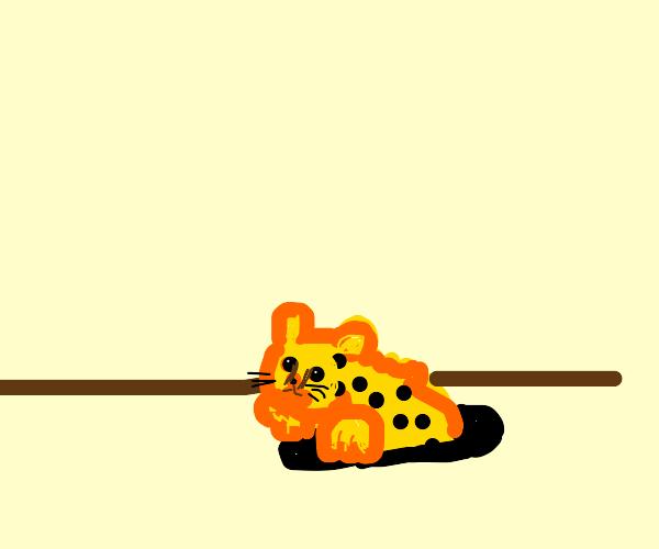 A cheetah hiding in a hole