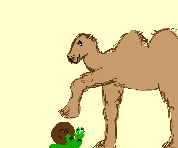 Evil camel is about to crush a snail