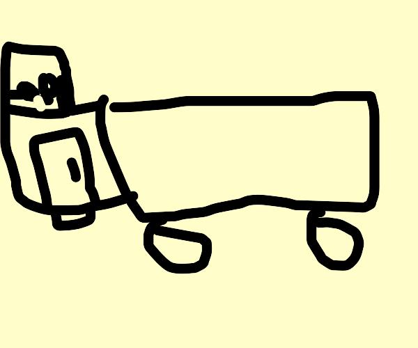 Semi trucks (lots of them)