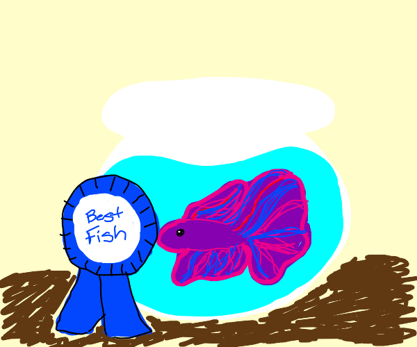 Betta Fish won best fish :)